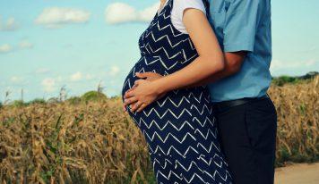כמעט הכל על הריון ולידה בהולנד