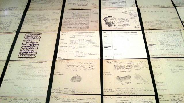 אוסף הפתקים המקוריים של האוצרים. (צילום: פבל כץ)