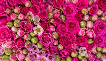 עסק של פרחים