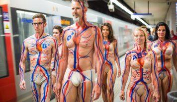 דאצ'ניוז: מה קורה לדם שלנו אחרי שאנחנו תורמים?