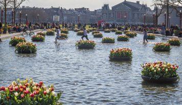 אביב הגיע! 5 אטרקציות אפריל בהולנד