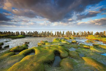 חשיפה לצפון: חרונינגן