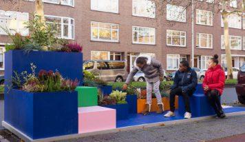 עירוניות הולנדית משמחת